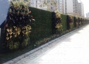Vertical_Garden_Green_wall_Delhi_India14