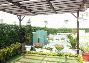 Vertical_Garden_Green_wall_Delhi_India17