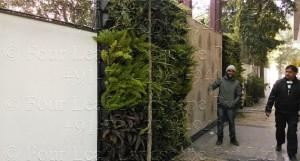 Vertical_Garden_Green_wall_Delhi_India21