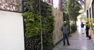 Vertical_Garden_Green_wall_Delhi_India23