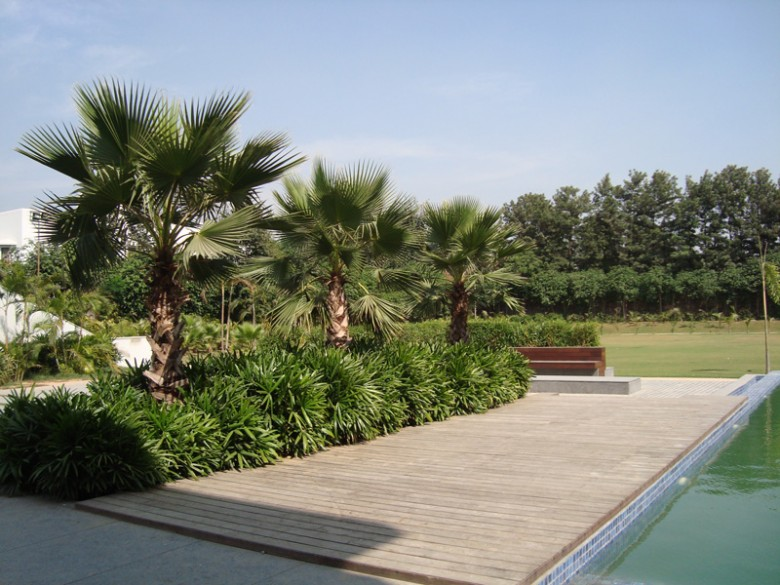 sawhney-farm-landscape-design-6