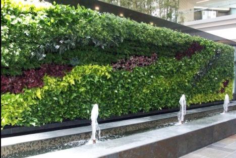 green wall delhi